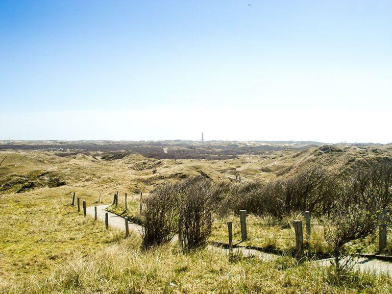 Norderneyer Landschaft